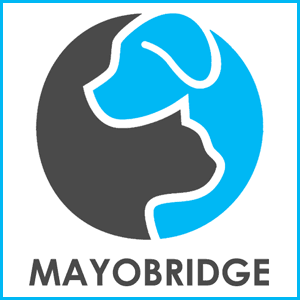 Mayobridge Boarding Kennels and Cattery